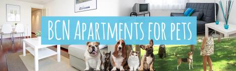 Top 5 apartamentos para animales