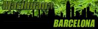 Marijuana in Barcelona - Legal status, clubs, and debate