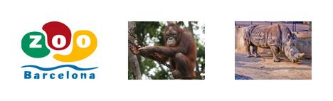 Zoo w Barcelonie: bilety, zniżki, godziny otwarcia