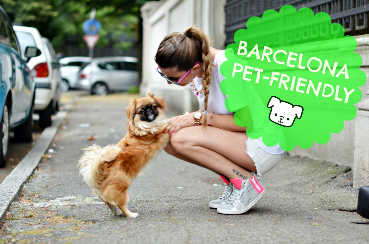 Barcellona a quattro zampe, una capitale pet-friendly.