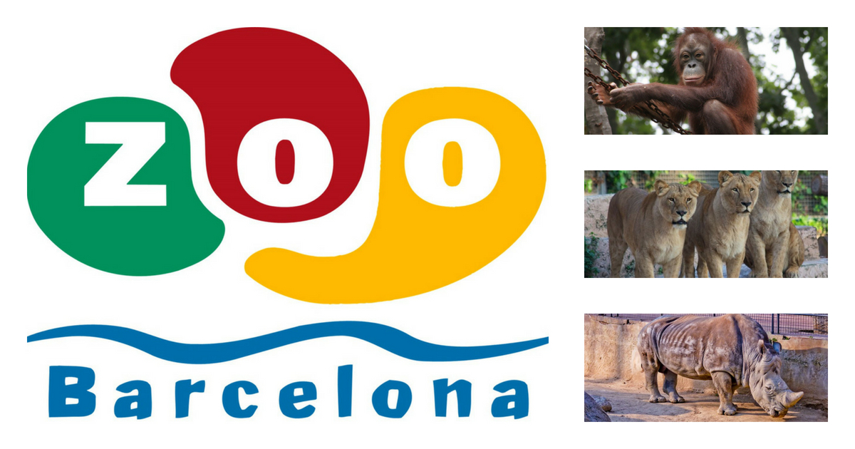 Barcelona Zoo: Tickets, Opening Hours and Discounts