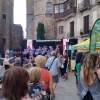 Fiestas de Sant Roc 3