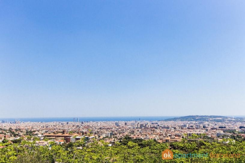 View Landscape