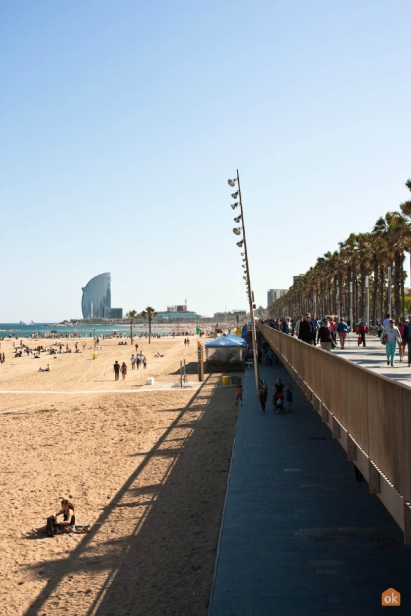 Playa  Barceloneta 1