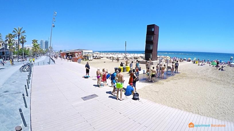 Cubes Barceloneta