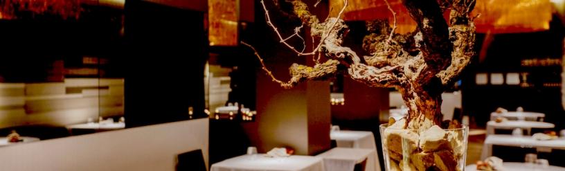 Cin sentits Restaurant