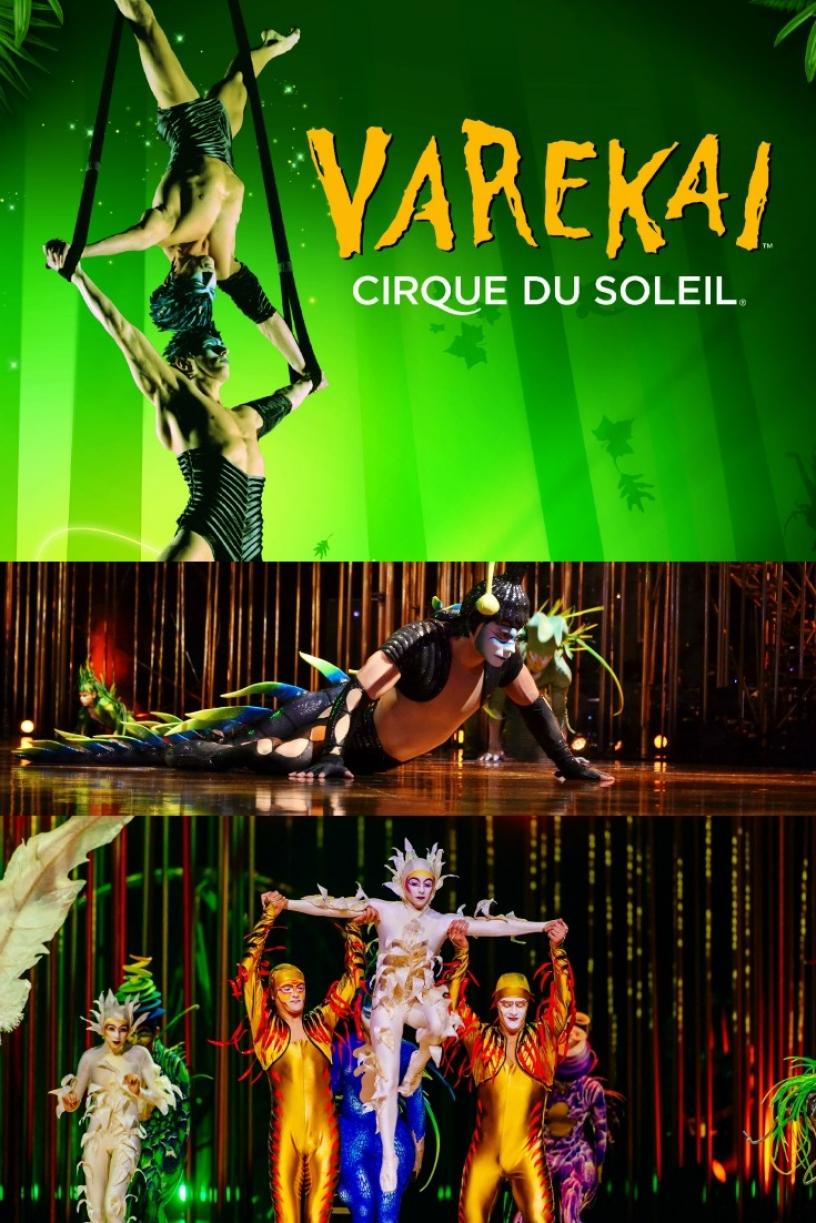 Cirque du soleil Varekai in Barcelona