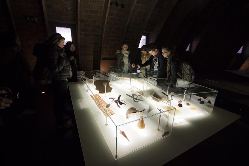Estudiantes descubriendo La Pedrera o Casa Milá de Gudí en Barcelona