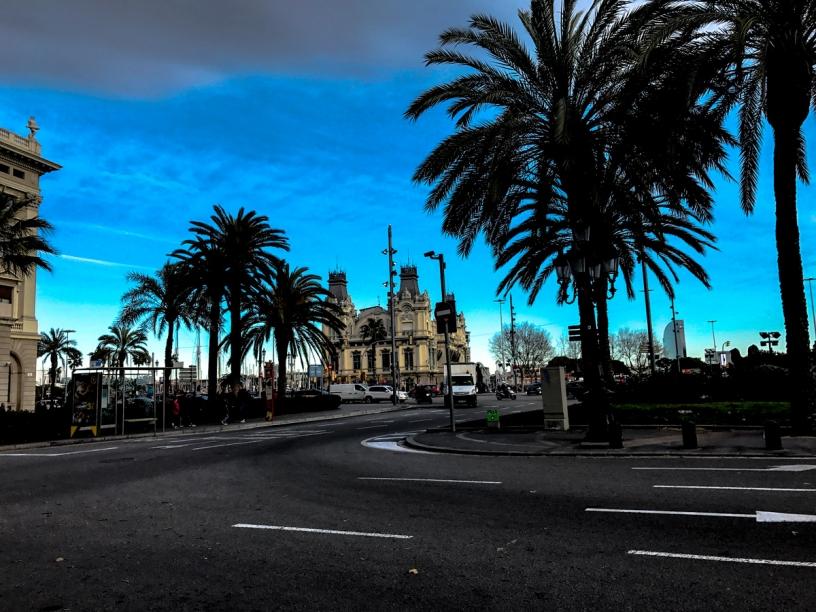 palmtrees port vell