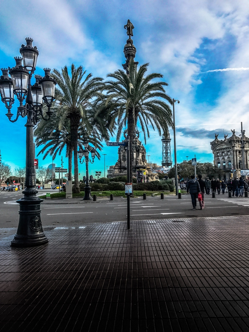 Palmtrees Rambla Barcelona