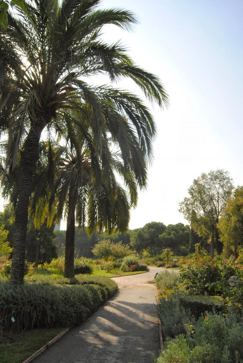 Parc de Cervantes, Barcelona