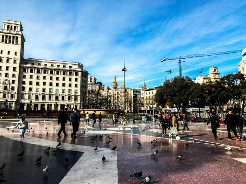 Pigeon Plaza Catalunya