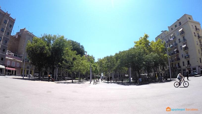 Plaça del Poeta Boscà barceloneta