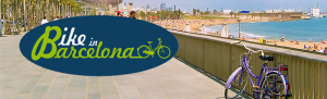 Bike rental and tours in the city