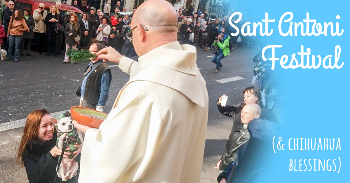 Sant Antoni Festival - Els Tres Tombs Parade