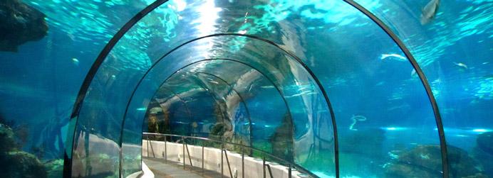 Alojamiento cerca del aquarium de barcelona - Aquarium donosti precio ...