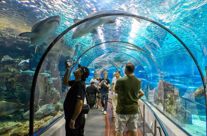 Het Aquarium van Barcelona