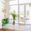 Ingresso alla terrazza - finestre di vetro pieno