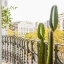 Balcony with cactus