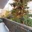Balcony and tre