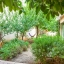 Hängmatta i trädgården