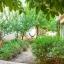 Riippumatossa puutarhassa