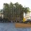 Plaza Del Sol - Del Canó